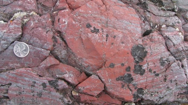Bright red hematite seen here, which contains tubular microfossils, is evidence of life that existed some four billion years ago.