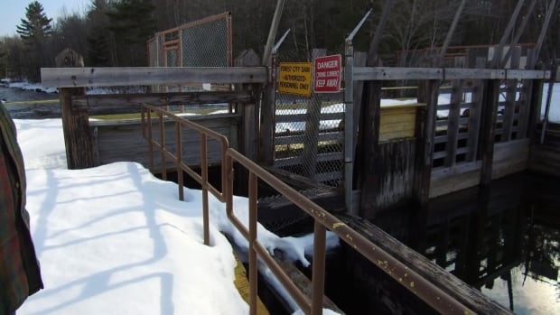 Woodland Pulp has applied to permanently open the gates at the company's Forest City dam, which would lower water levels at East Grand Lake and North Lake,