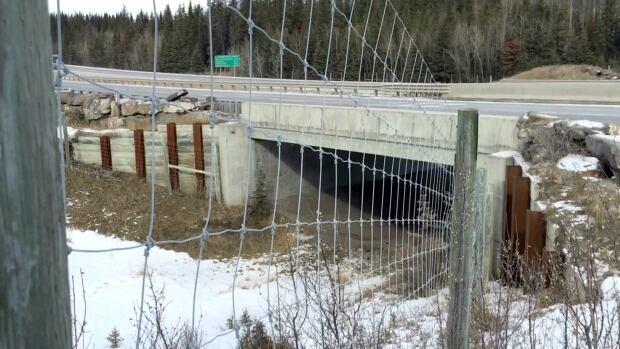 Trans-Canada Highway fencing