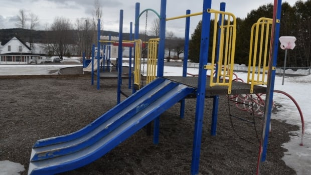 Westfield Elementary School is hoping to have its K-2 playset replaced with one that is more inclusive.