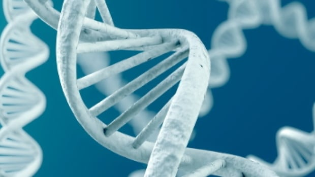 Dna Testing Kitchener