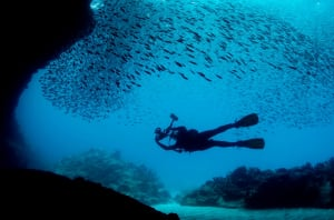 It's like Google Street View for the ocean, and it might ...