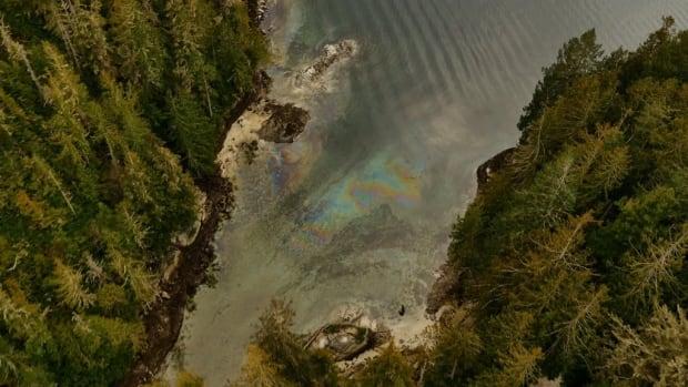fish farm diesel spill