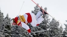 Freestyle World Cup Skiing