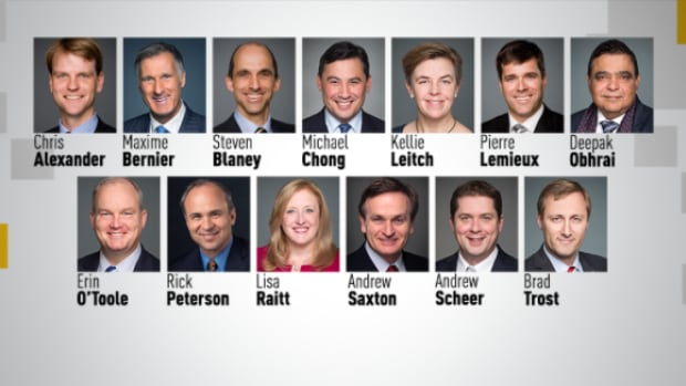 Power & Politics spoke to each of the 14 candidates vying for the Conservative Party leadership over the past year. Watch the interviews below