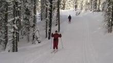 Paulson ski trails