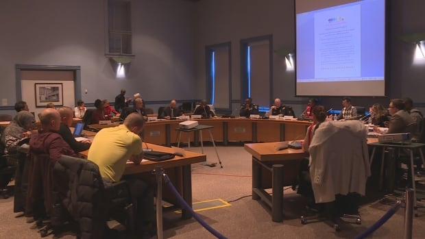 The city's Community and Police Action Committee met Thursday to discuss the stigma of mental health in Ottawa's black community.