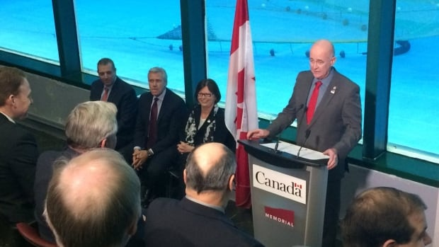 Liberal MP Ken McDonald speaks at Friday's announcement of the $325-million Atlantic Fisheries Fund. Next to him, from left, are provincial Fisheries Minister Steve Crocker, Newfoundland and Labrador Premier Dwight Ball, and federal Public Services and Procurement Minister Judy Foote.