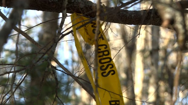 Human remains found on rural property near Salmon Arm