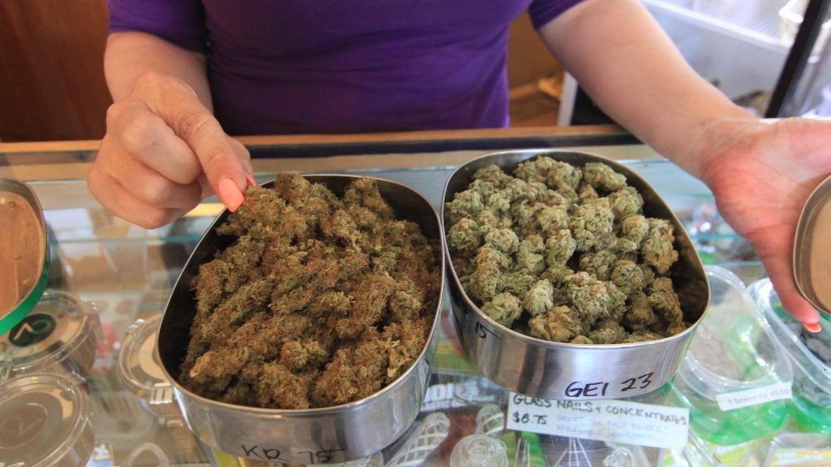 Former Mountie teaching safe workplace marijuana use