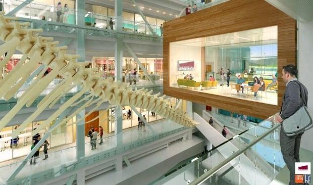 Memorial University Blue Whale