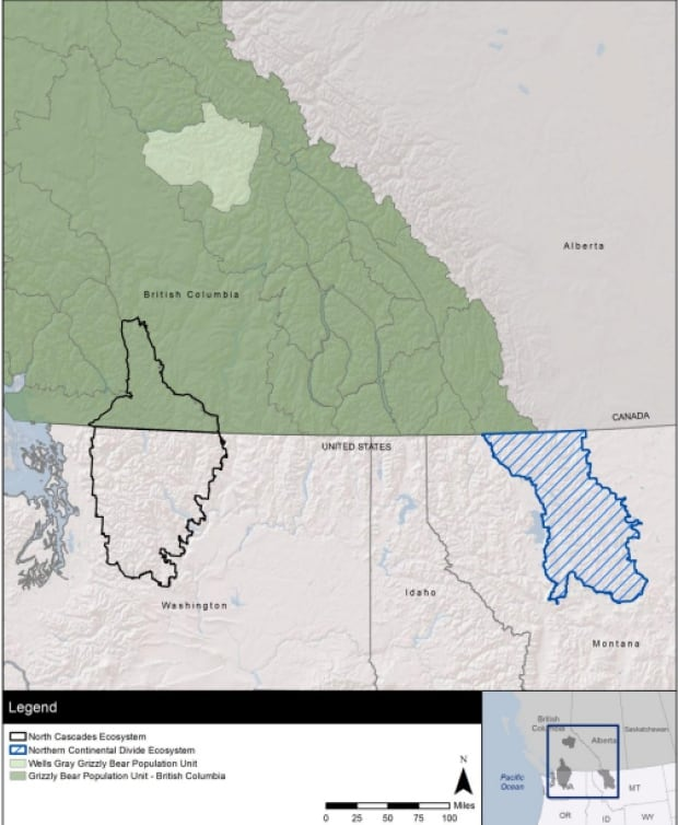 Grizzly move map