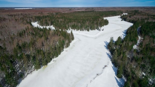 The Nature Conservancy of Canada owns and protects this land on Enmore RIver, P.E.I.
