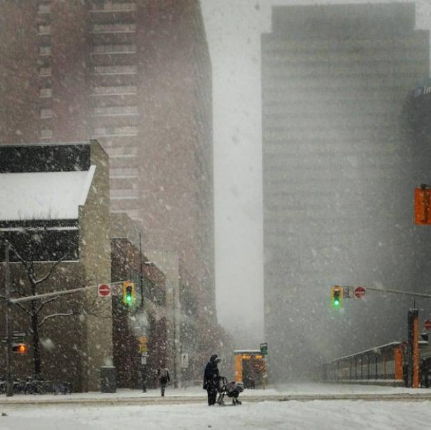 Snow Hamilton