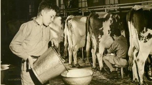 Dairy Duty