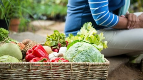 452765563 woman seated by woven basket of fresh veggies