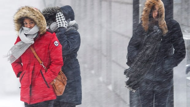 Areas to the west of Ottawa could see between 15 and 30 centimetres of snow beginning on Saturday, according to Environment Canada.
