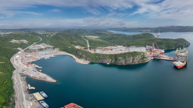 Four companies have responded to a request for proposals to lease the idle Bull Arm fabrication site in Trinity Bay.