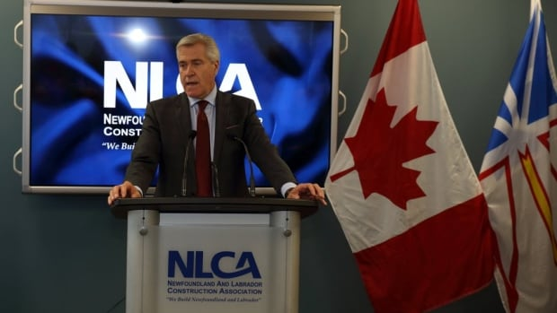 Premier Dwight Ball previewed some of the items in the upcoming 2017 budget, announcing a multi-year infrastructure plan Friday.
