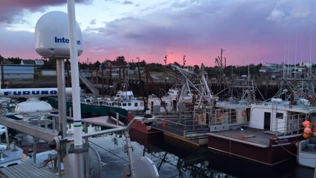 Fifteen fishing organizations representing more than 20,000 fish harvesters attended a meeting last Thursday with Transport Canada but didn't stay long.