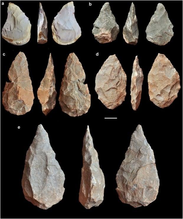 Neanderthal relative tools