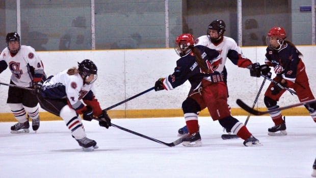 woolwich wild women's hockey