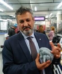 Rayeghani brain