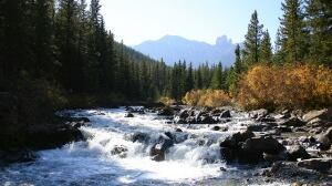 watersheds alberta