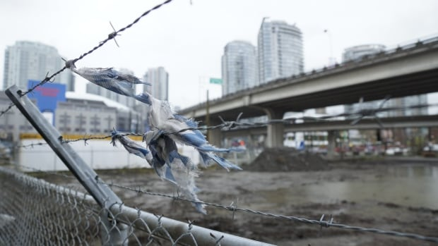 The City of Vancouver has turned to American architect Zena Howard to help with a revitalization of Vancouver's Hogan Alley, once the Georgia viaduct is removed.