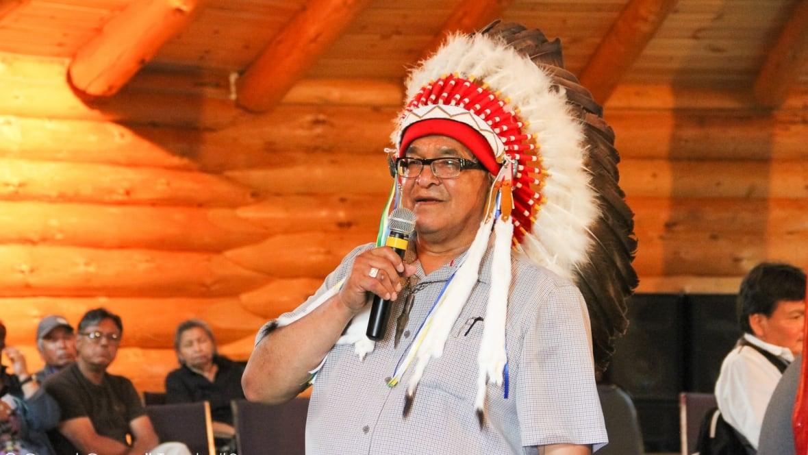 Indigenous leaders call for Senator Lynn Beyak's resignation