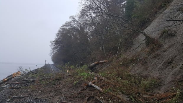 A landslide on the rail tracks in South Surrey, B.C., captured by a nearby resident. (Erik Seiz)