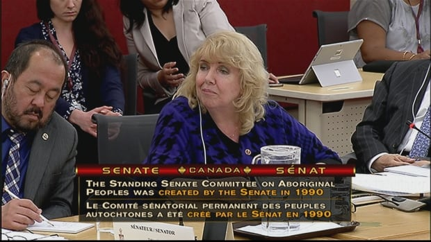 Senator Lynn Beyak asked survivors at the Senate's Aboriginal peoples committee Wednesday what they thought about her plan for a national audit on all First Nations spending.