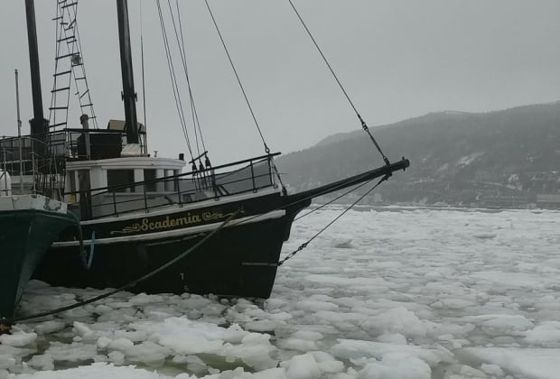 Ice in St. John's harbour March 31, 2017