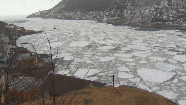 St. John's Harbour narrows ice storm March 31, 2017