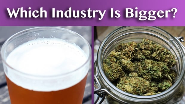 Which Industry is bigger beer or pot