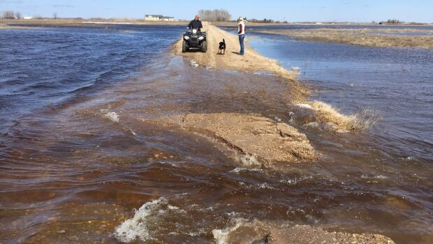 Jill Caldwell, her husband and their dog walk down the road near their house, located west of Pierson, Man., in the Rural Municipality of Two Borders on Sunday. She says their property unfortunately has become lakefront.
