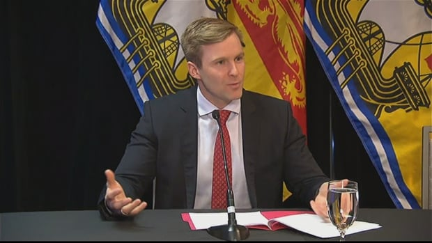 Premier Brian Gallant blamed Service New Brunswick employees for what he called 'a very troubling and very disappointing' situation revealed by CBC News.