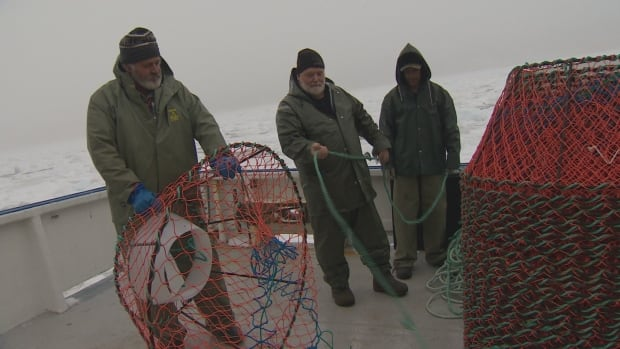 These fishermen are in St. John's gearing up Monday for the crab fishery, but quota cuts could make for a lean season.
