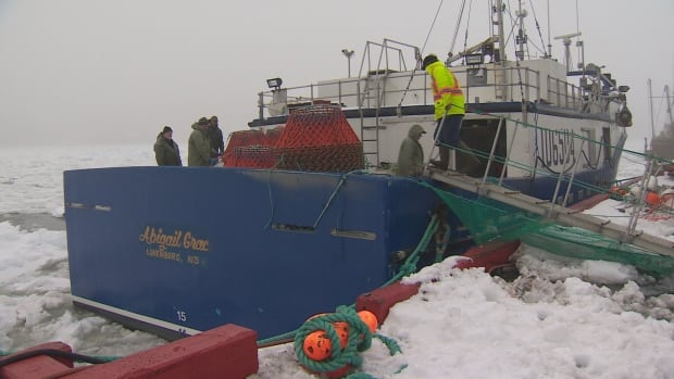 The Abigail Grace, of N.L. seafood processors Quinlan Brothers, is one of the many vessels that rely on revenue from the crab fishery face an uncertain year unless prices improve, according to the fisheries union.