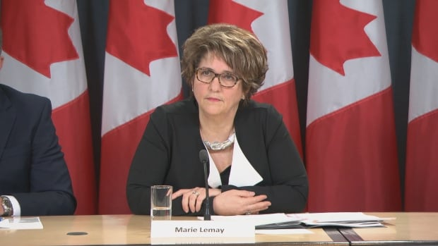 Marie Lemay, the deputy minister in charge of the Phoenix system, says work continues to have pay requests handled at service standards.