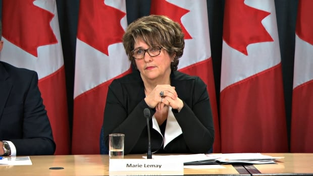 Deputy Minister Marie Lemay says that out of 340 employees that received performance pay, 'definitely not all' would be involved with the Phoenix pay system.