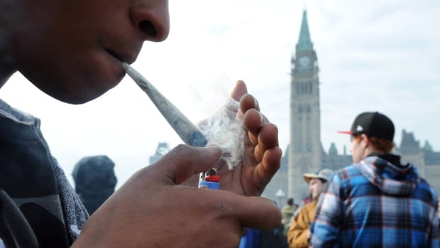 A protester lights a joint during a 4-20 marijuana rally on Parliament Hill in Ottawa on April 20, 2012. The Liberal government has tabled legislation that would allow people to possess up to 30 grams of dried or fresh cannabis and sets the minimum  age at 18.