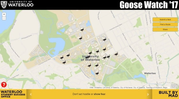 Goose Watch map