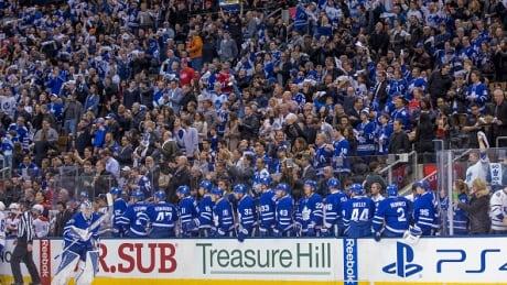 Air-Canada-Centre-Fans