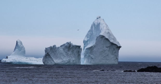 Iceberg at Ferryland