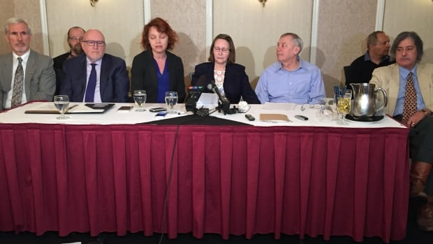 NDP to freeze Hydro rates and eliminate bridge tolls if elected