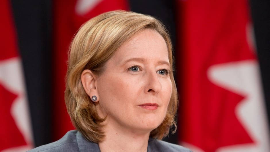 Bank of Canada's Senior Deputy Governor Carolyn Wilkins raises concern about automation and what we need to do to prepare for it.