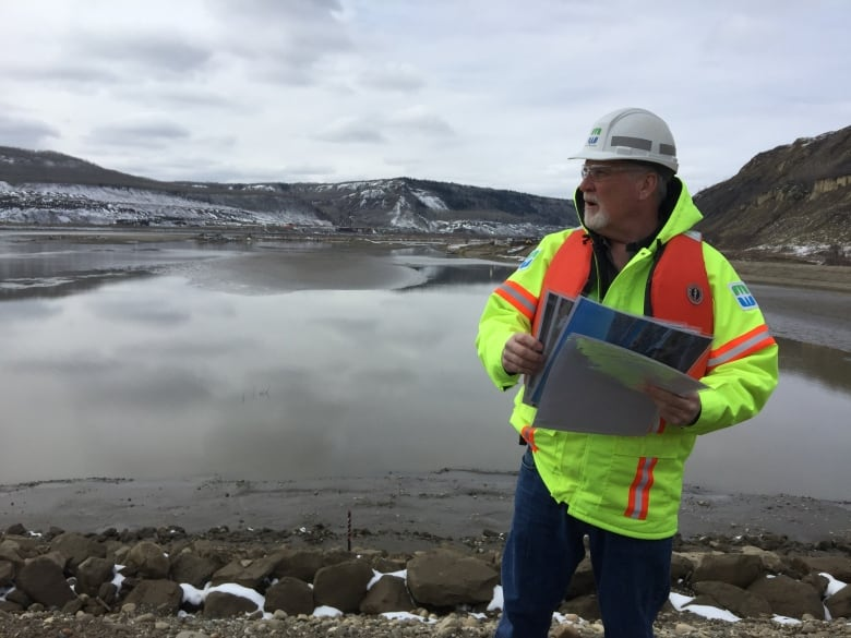 B.C.'s Site C dam project behind schedule, plagued by problems, expert claims