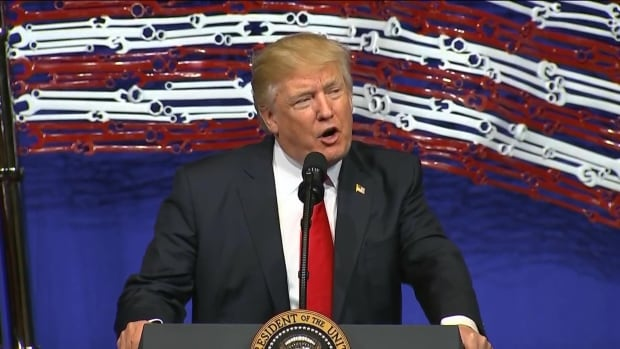 Donald Trump, dairy comments