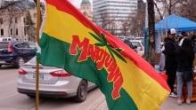 420 at the Manitoba Legislature